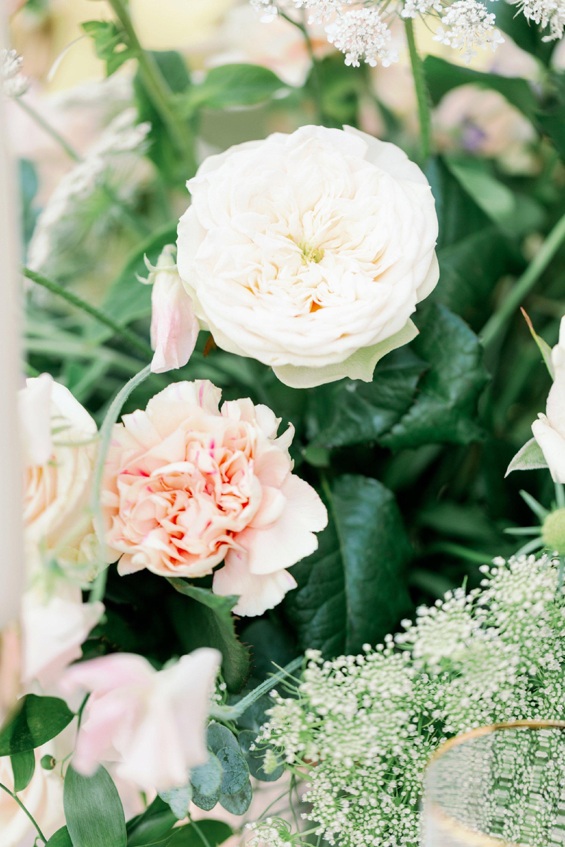 An Elegant Styled Shoot at Baddow Park House (c) Camilla J Hards (46)
