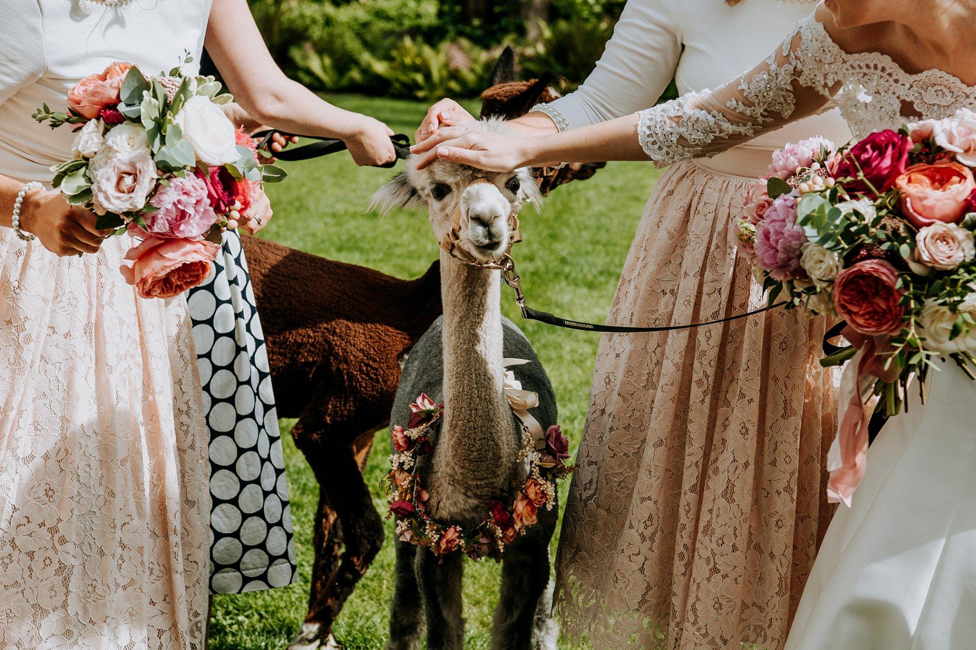 M & G Wedding Photography (16)