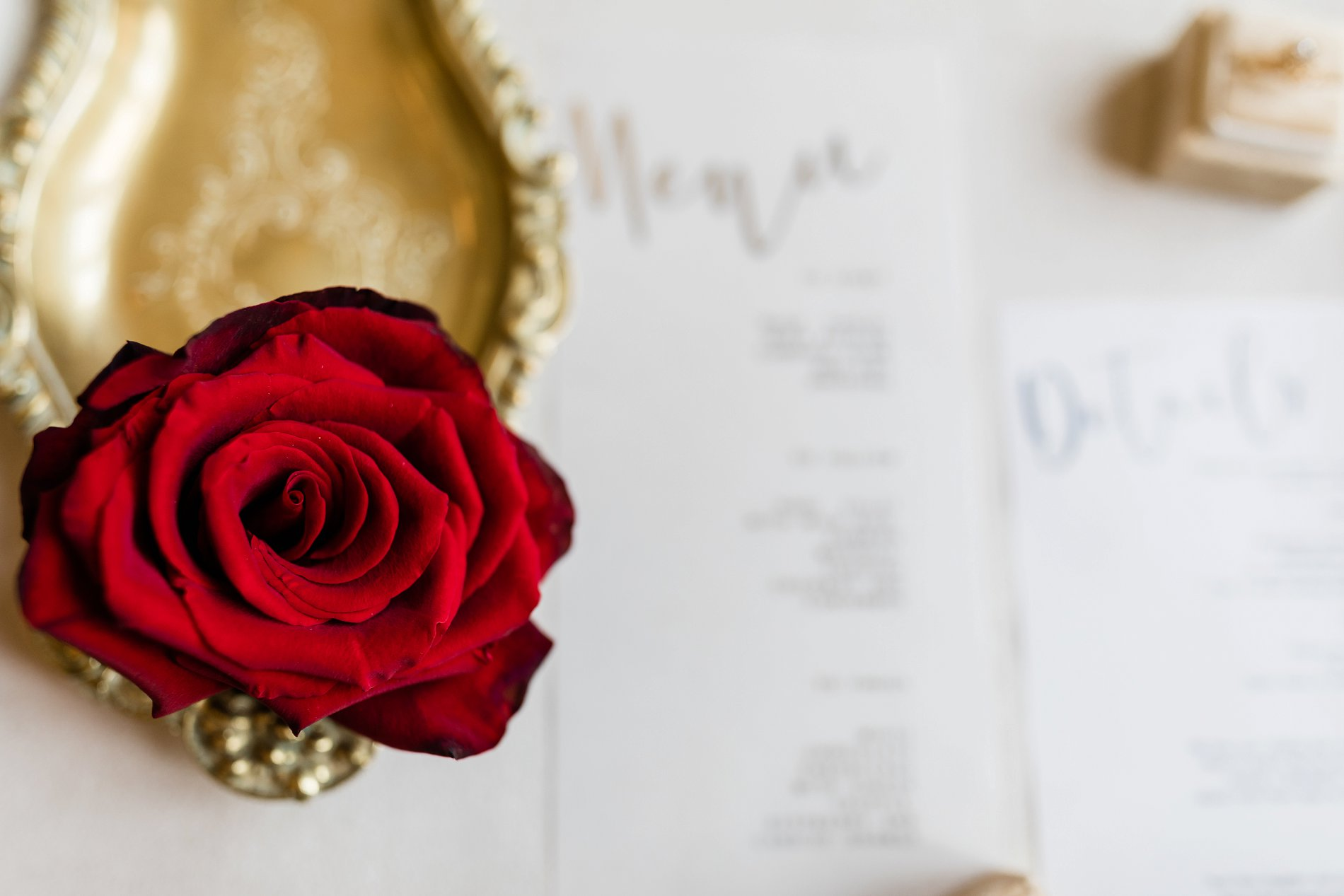 Forever Yours Styled Shoot (c) Camilla J. Hards and Courtney Dee Photography (4)